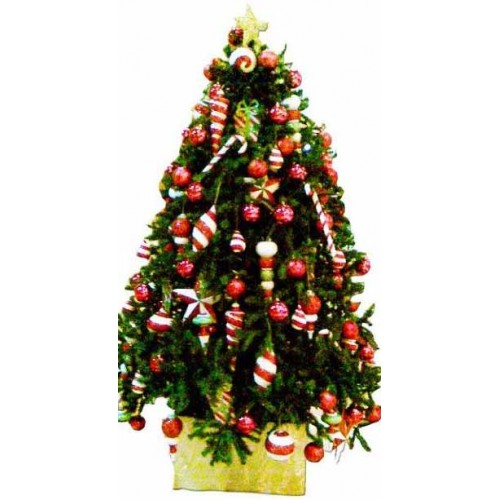 Mail Order Christmas Trees